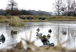 Yamaha Outdoors Tips — Haul Waterfowl Gear In and Out