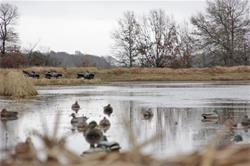 Yamaha Outdoors Tips — Start Your Waterfowl Season Right