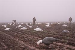 Yamaha Outdoors Tips — Hunting Spring Snow Geese